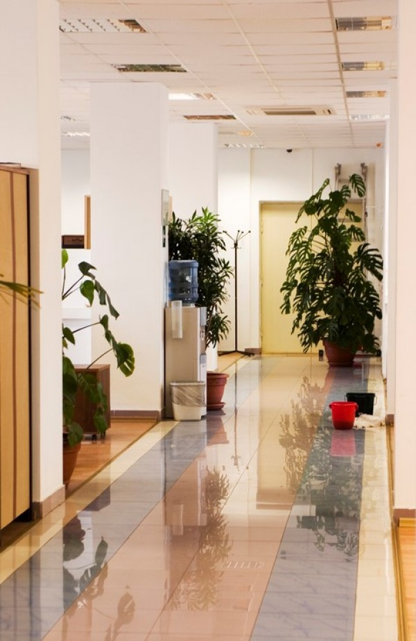 We provide commercial cleaning services for:-